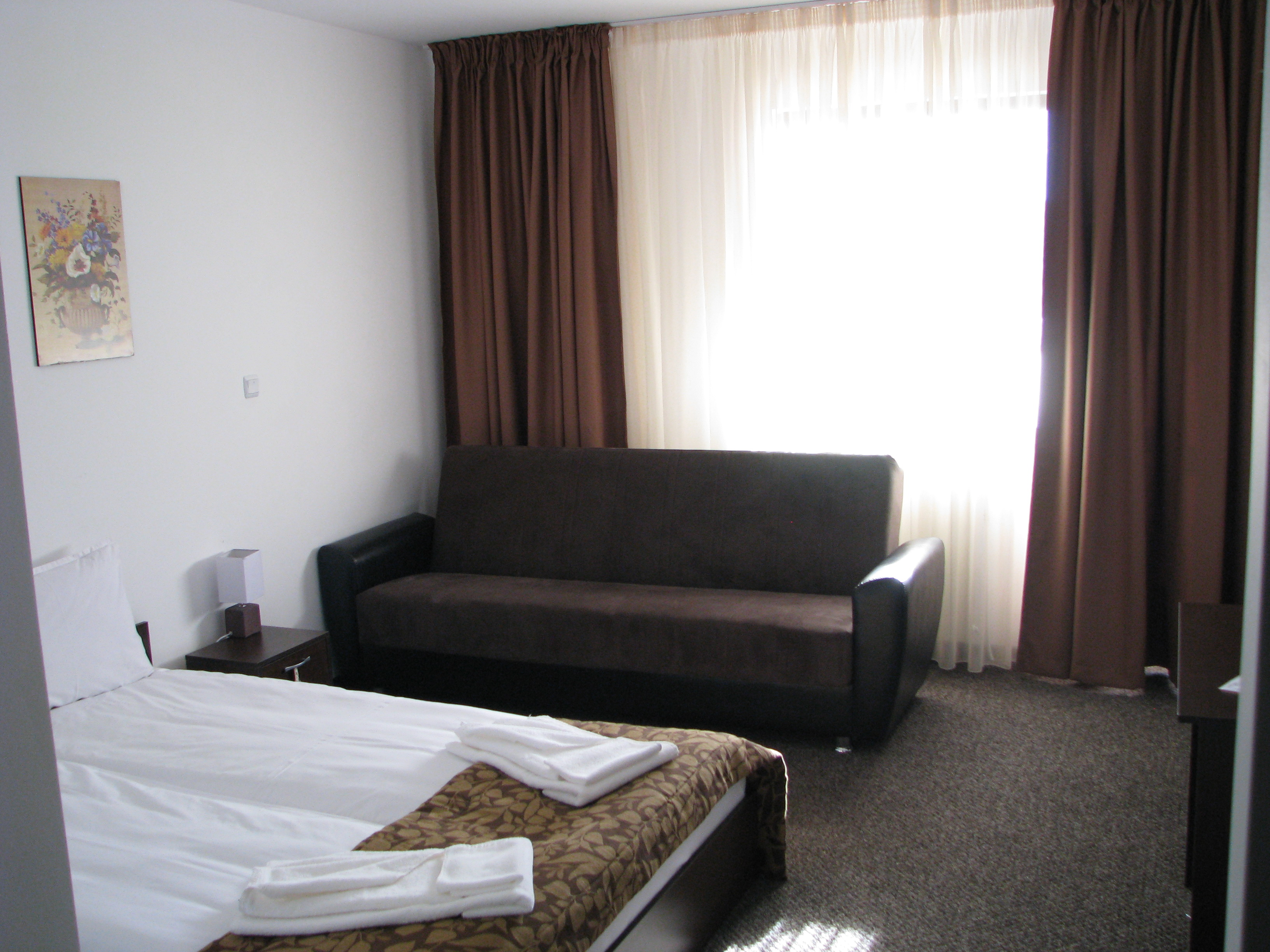 Standard double room with sofa bed park hotel orlov kamak for Sofa bed hotel